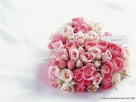 pink roses for valentines day pink in shape s day flowers 7