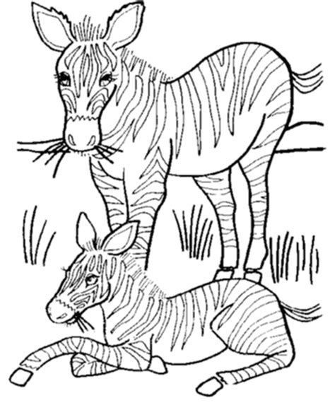 coloring pages animals zebra wild animal coloring pages mother and baby zebra