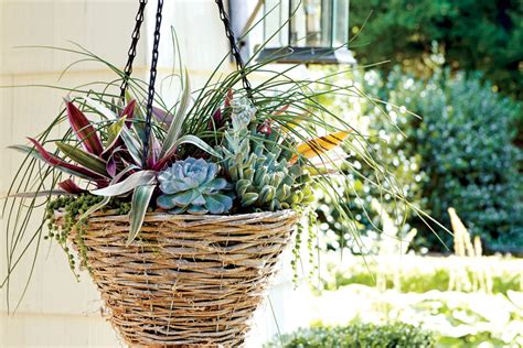 hanging garden containers succulent hanging container hanging garden baskets