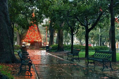 christmas tree in bienville square digital art by michael
