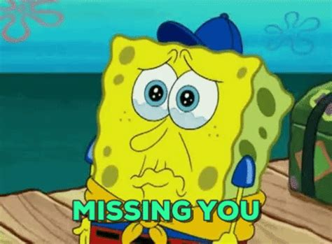 Animated Gif Meme Maker - i miss you memes gifs images to send when you re