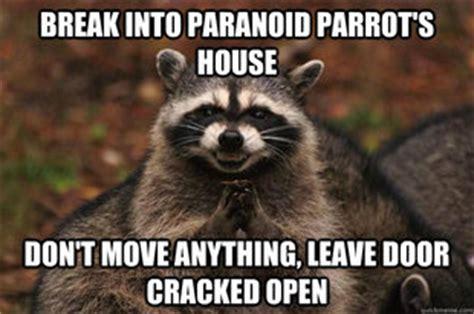 Raccoon Excellent Meme - evil plotting raccoon memes quickmeme
