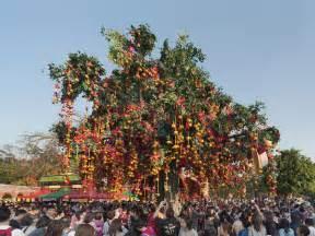 lam tsuen wishing tree new year best things to do in hong kong during new year