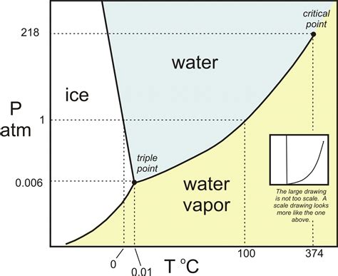 phase diagram phase rule