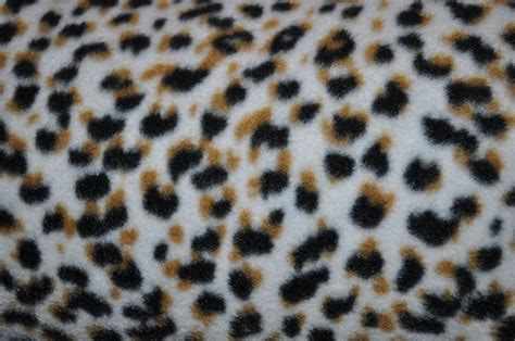leopard spots animal print jungle brown fleece fabric leopard spots print fleece fabric sold bty