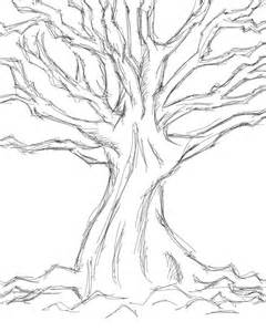 How To Draw A Tree Psikotes Images For Gt Simple Tree Sketches Images Wedding Tree