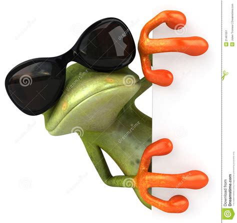 cool stock cool frog stock image image 21461051