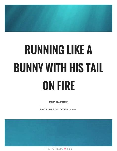 like a bunny running like a bunny with his tail on fire picture quotes