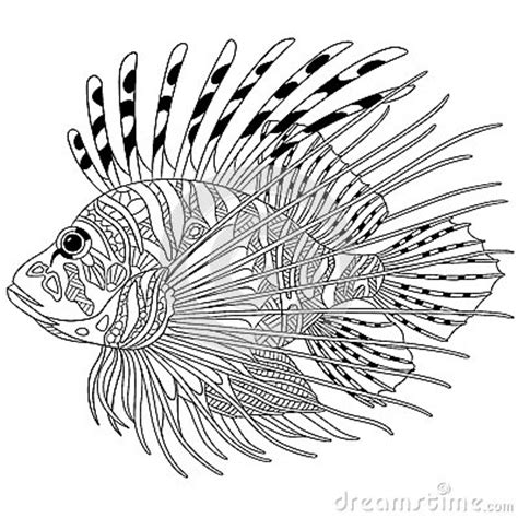zebra fish coloring page zentangle stylized zebrafish lionfish stock vector