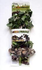 terrarium plants vines terrarium accents