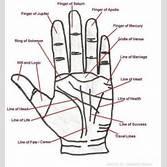 palmistry diagram