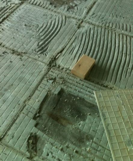 Subfloor Mold   .Finding, Removal