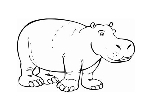 baby hippo coloring page ipopotamos colouring pages page 2
