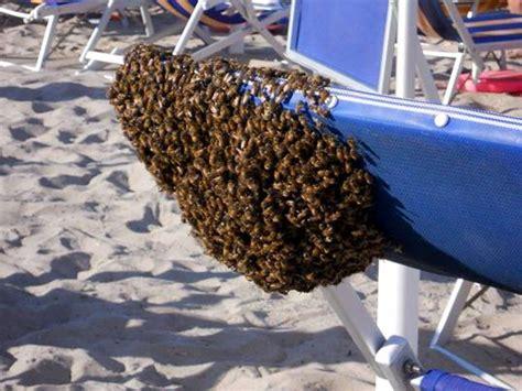 come si fanno le candele di cera candele con cera d api