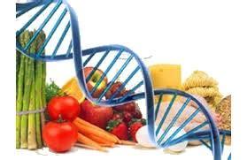 tumori e alimentazione alimentazione e tumori dietologo a verona o nutrizionista