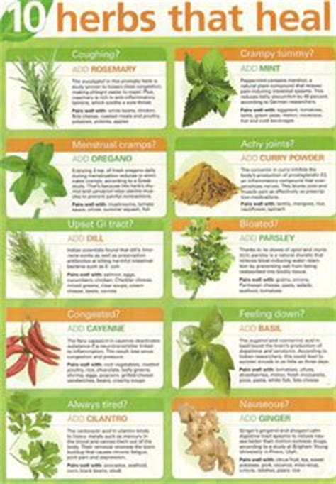 herb care chart medicinal plants charts and plants on pinterest