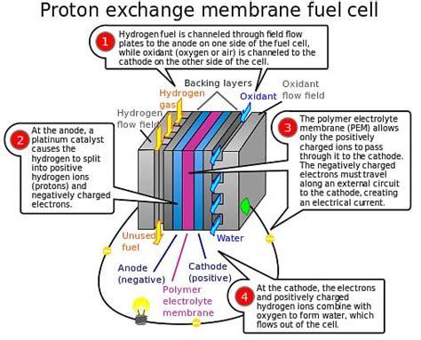 Proton Exchange Membrane Fuel Cell by Proton Exchange Fuel Cell Proton Free Engine Image For