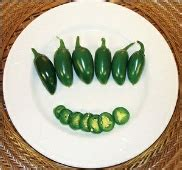 Jalapeno Pepper 10 Seeds 1 Pack Maica Leaf bubba bubba jalepano bubba jalapeno pepper bubba jalapeno peppers bubba jalapeno pepper