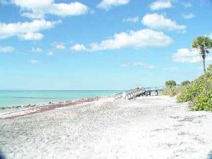 friendly beaches in florida venice florida pet friendly vacations guide venice pet friendly beaches parks