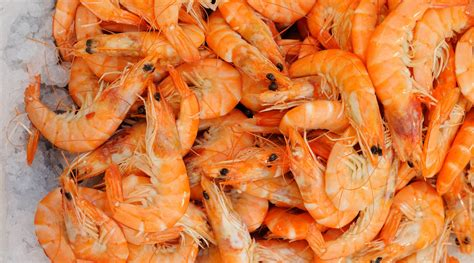 Shelf Of Shrimp by Tips For Buying And Cooking Shrimp The Splendid Table