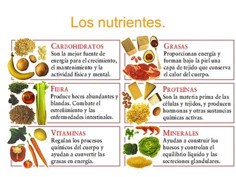 proteinas y grasas las prote 205 nas los carbohidratos y las grasas nutrivlogs