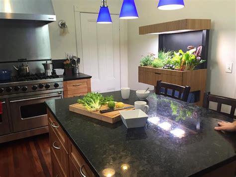 tech indoor garden  aquaponics  grow  salad  day