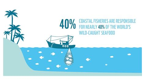commercial fishing boat definition working for sustainable fishing wwf