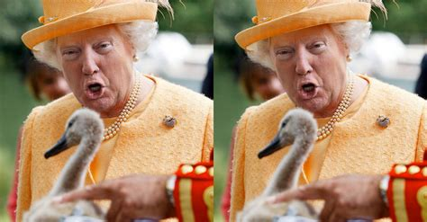 queen elizabeth donald trump donald trump s face on queen elizabeth s head is the