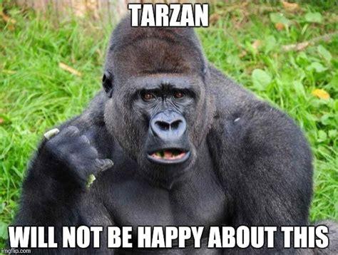 gorilla fans imgflip