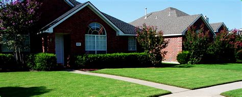 landscaping lawn care king of the greens new bern