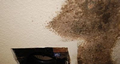 mold growth in bathroom mold on bathroom ceiling pleasant property home security fresh on mold on bathroom