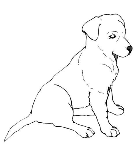 coloring pages of lab puppies free coloring pages