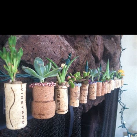 cork succulent planter wine cork succulent planters diy crafts