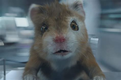 new baby hamster pitches kia s grown up soul turbo news