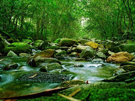 river garden yoga