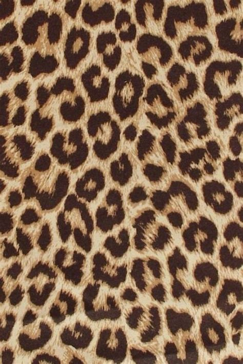 leopard pattern tumblr 17 best ideas about leopard print background on pinterest