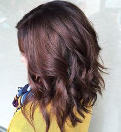 what color does regis salon use gray highlights in brown hair blond highlights cover
