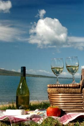 wine recommendations  perfect picnics lovetoknow