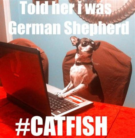 Catfish Meme - photos mtv s catfish season 2 finale awesome memes