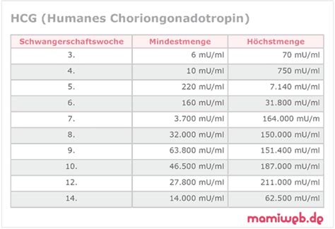hcg wert tabelle humanes chroiongonadotropin hormon hcg mamiweb de