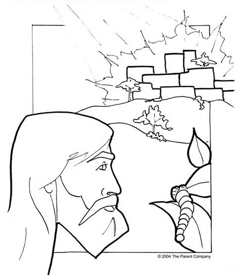 Jonah Vine Coloring Page | jonah coloring page whale coloring pages jonah and the