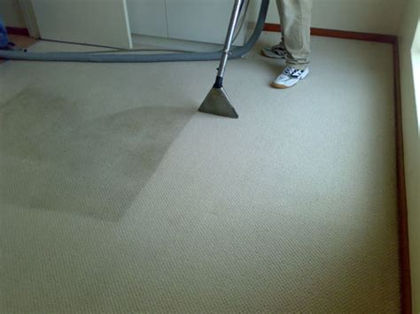 Professional Upholstery Cleaning by Professional Carpet Cleaning After Flood Nj High Quality Carpet Cleaners