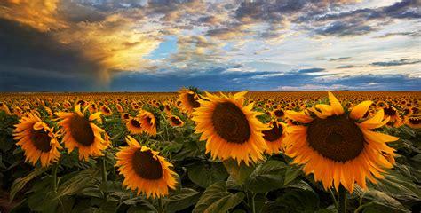 colorado landscape photography colorado pictures