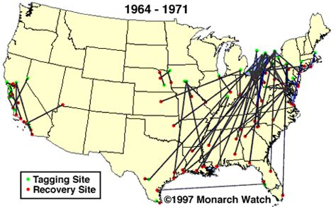 monarch watch migration tagging tagging tagging and migration maps monarch watch