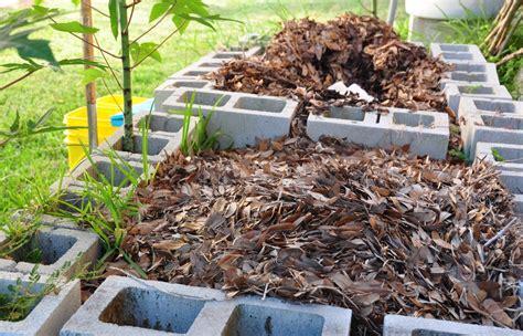 cara membuat zpt organik untuk tanaman padi pedoman dan cara membuat pupuk kompos sederhana dari