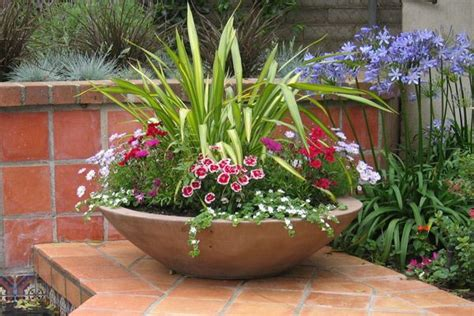 for the wok planters around pool garden spaces