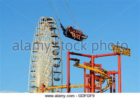 swing roller coaster ferris wheel and a roller coaster in an amusement park