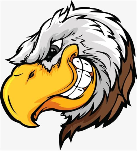 a bald eagle cunning the bald eagle eagle png image for