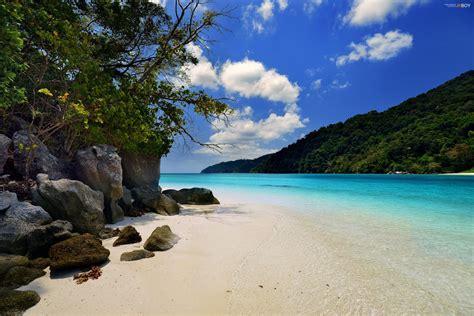 ocean islands resort summer jungle beach hd wallpaper