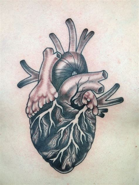 human heart tattoo anatomical anatomical merling
